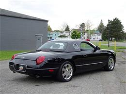 Picture of '02 Ford Thunderbird located in Hilton New York Offered by Great Lakes Classic Cars - Q9HB
