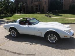 Picture of 1978 Chevrolet Corvette - $18,500.00 Offered by a Private Seller - Q9N4