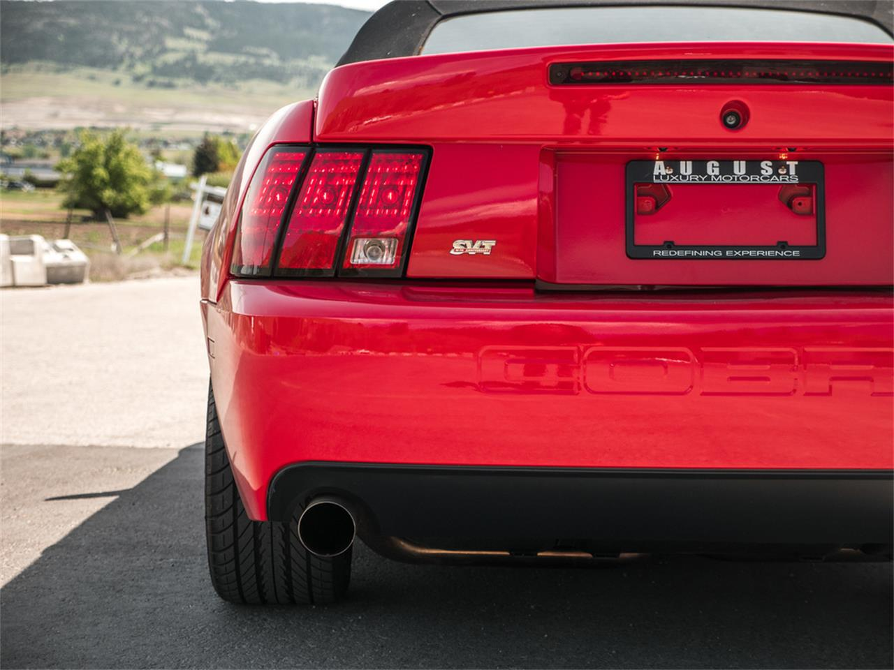 Large Picture of '03 Mustang - Q9QR