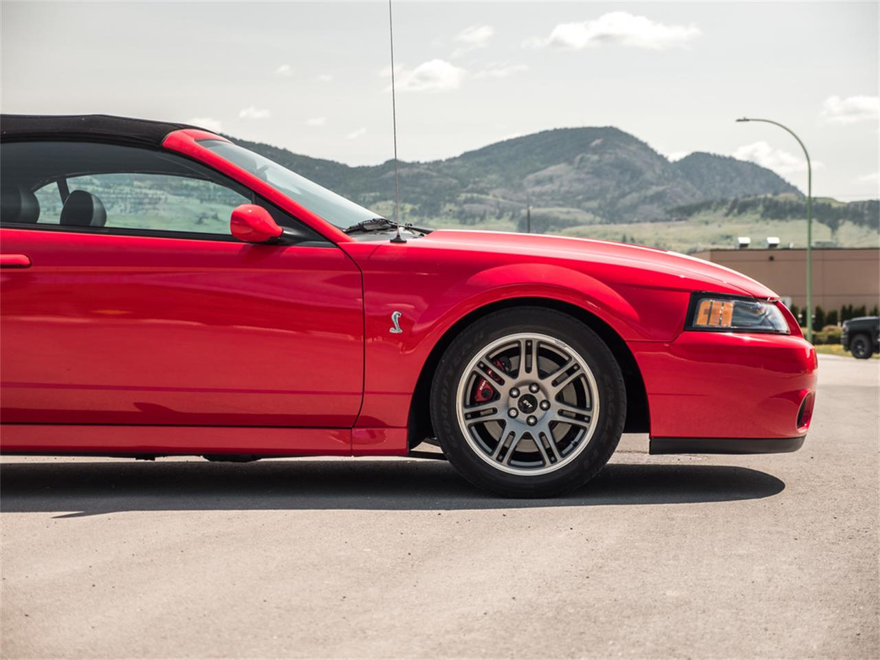 Large Picture of '03 Ford Mustang located in Kelowna British Columbia - $38,185.00 Offered by August Motorcars - Q9QR