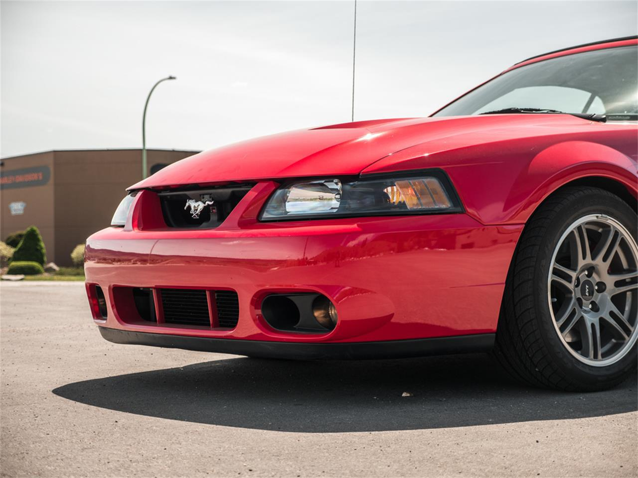 Large Picture of 2003 Ford Mustang located in British Columbia - $38,185.00 - Q9QR