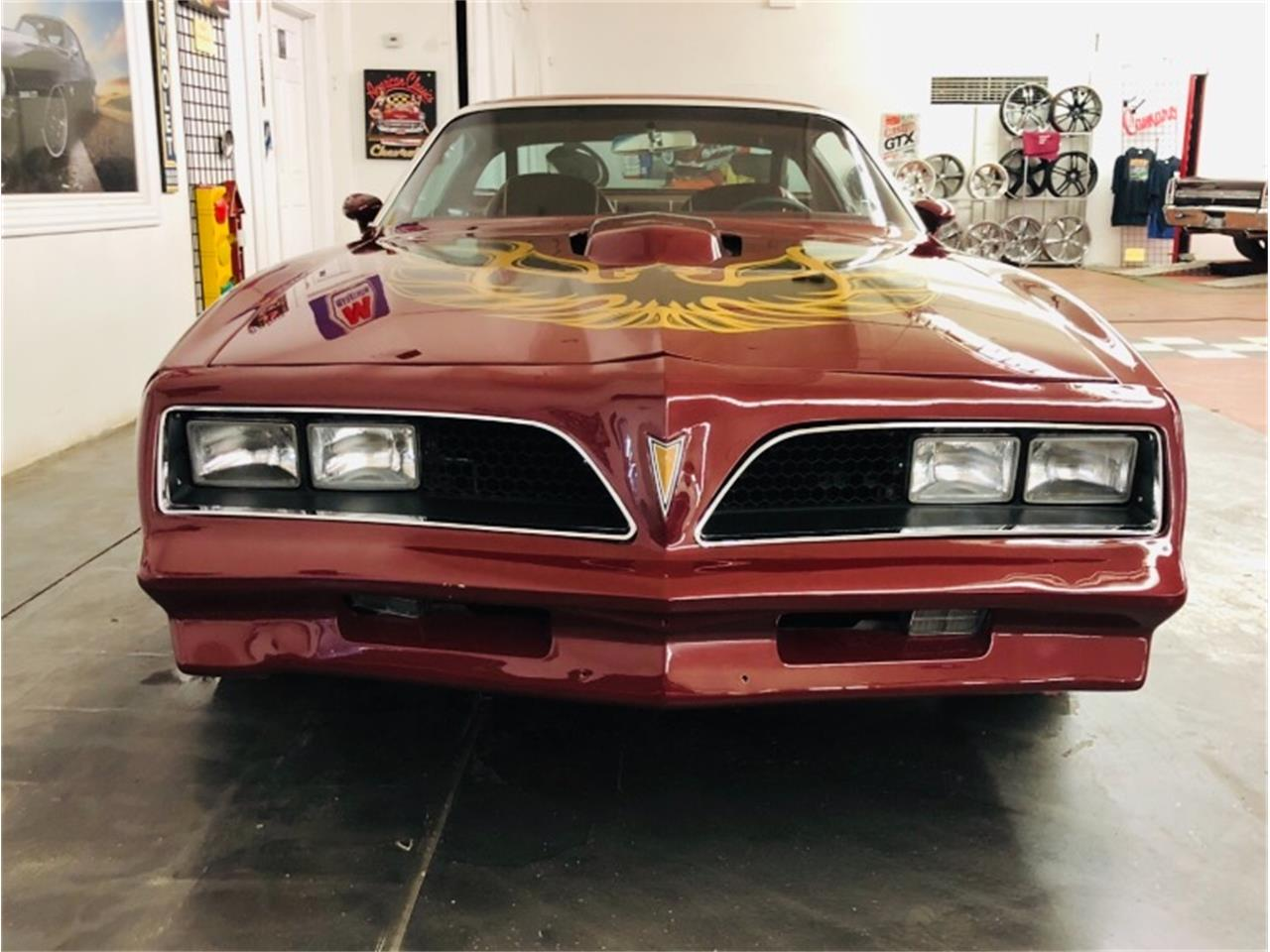 Large Picture of '78 Firebird Trans Am - Q9TR