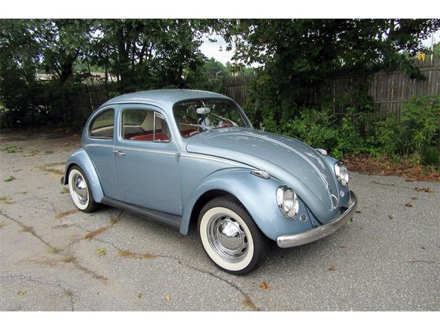 Picture of '60 Beetle - QAQM