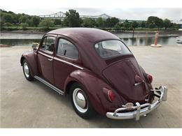 Picture of '61 Beetle - QARE