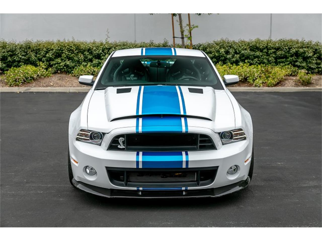 Large Picture of '14 Mustang Shelby GT500 Super Snake - QB1K