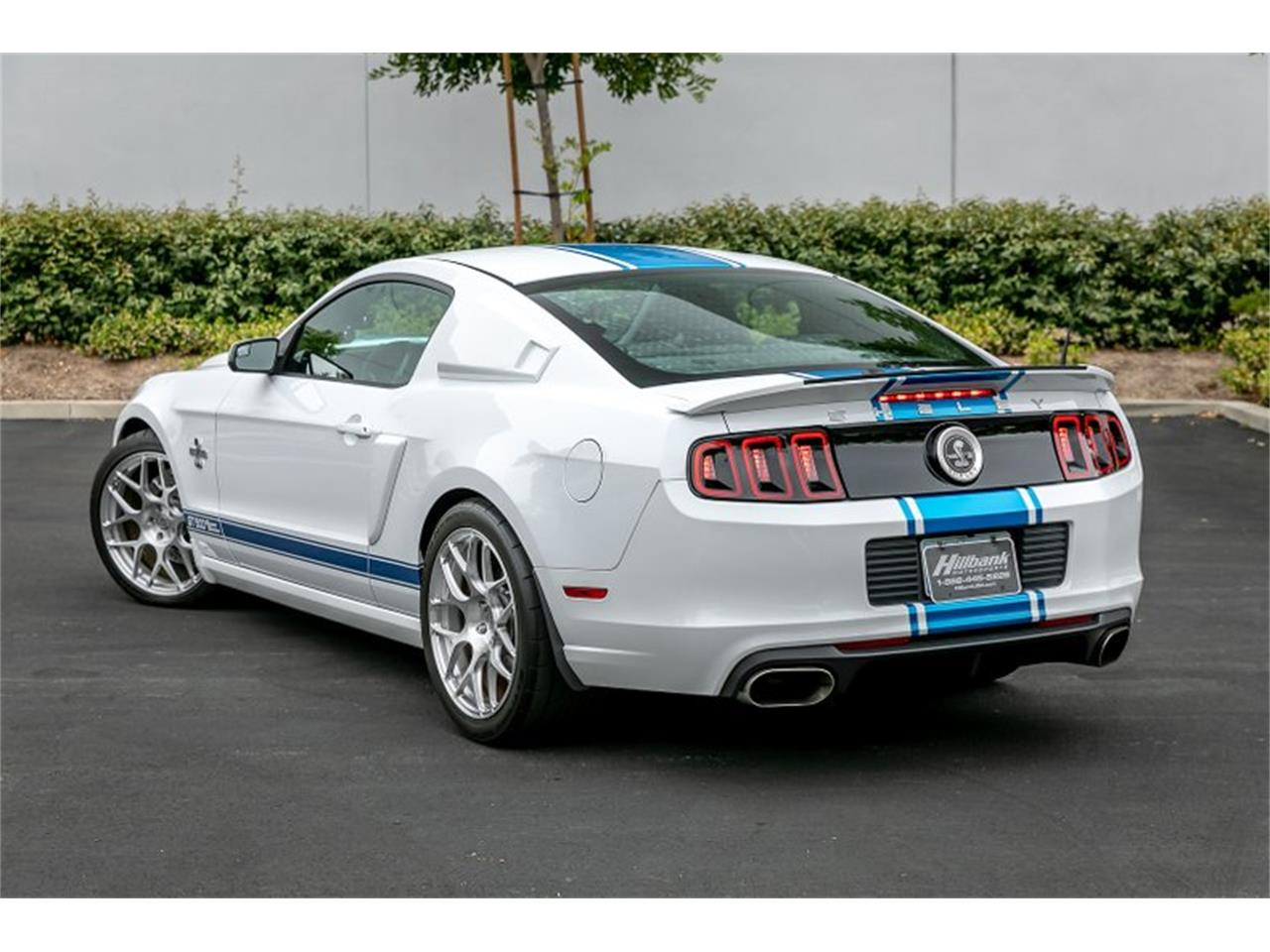 Large Picture of '14 Shelby GT500 Super Snake - QB1K