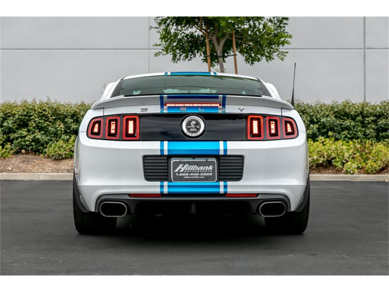Large Picture of 2014 Shelby GT500 Super Snake located in Irvine California - $109,950.00 Offered by Hillbank Motorsports - QB1K