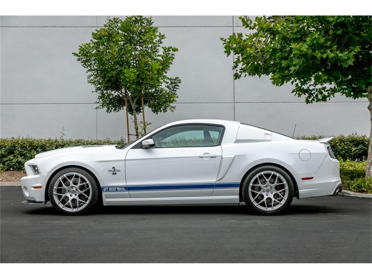 Large Picture of '14 Mustang Shelby GT500 Super Snake - $109,950.00 Offered by Hillbank Motorsports - QB1K