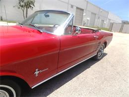 Picture of '66 Mustang located in POMPANO BEACH Florida Offered by Cool Cars - QB3J