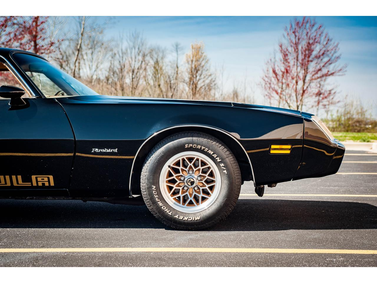 Large Picture of 1979 Pontiac Firebird Offered by Gateway Classic Cars - St. Louis - QB8A