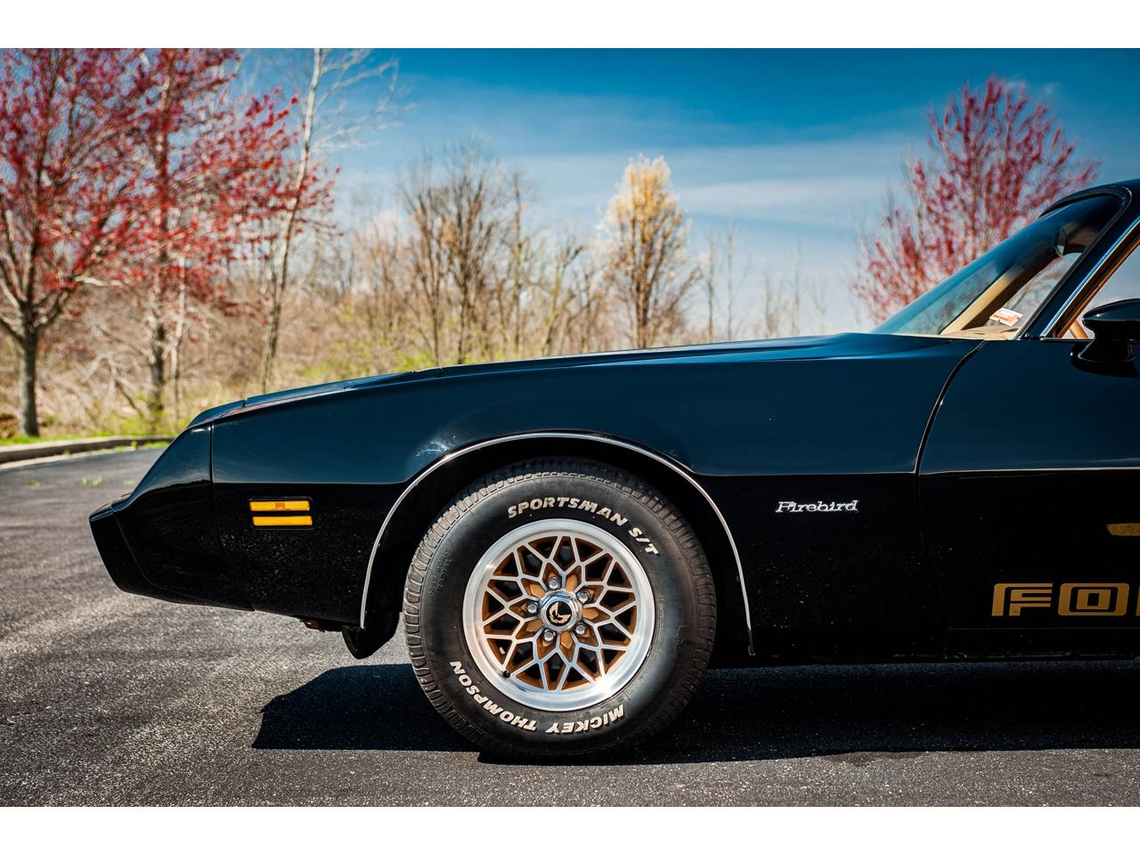 Large Picture of 1979 Firebird Offered by Gateway Classic Cars - St. Louis - QB8A