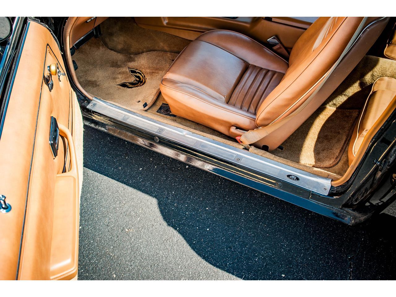 Large Picture of 1979 Pontiac Firebird - $36,500.00 - QB8A
