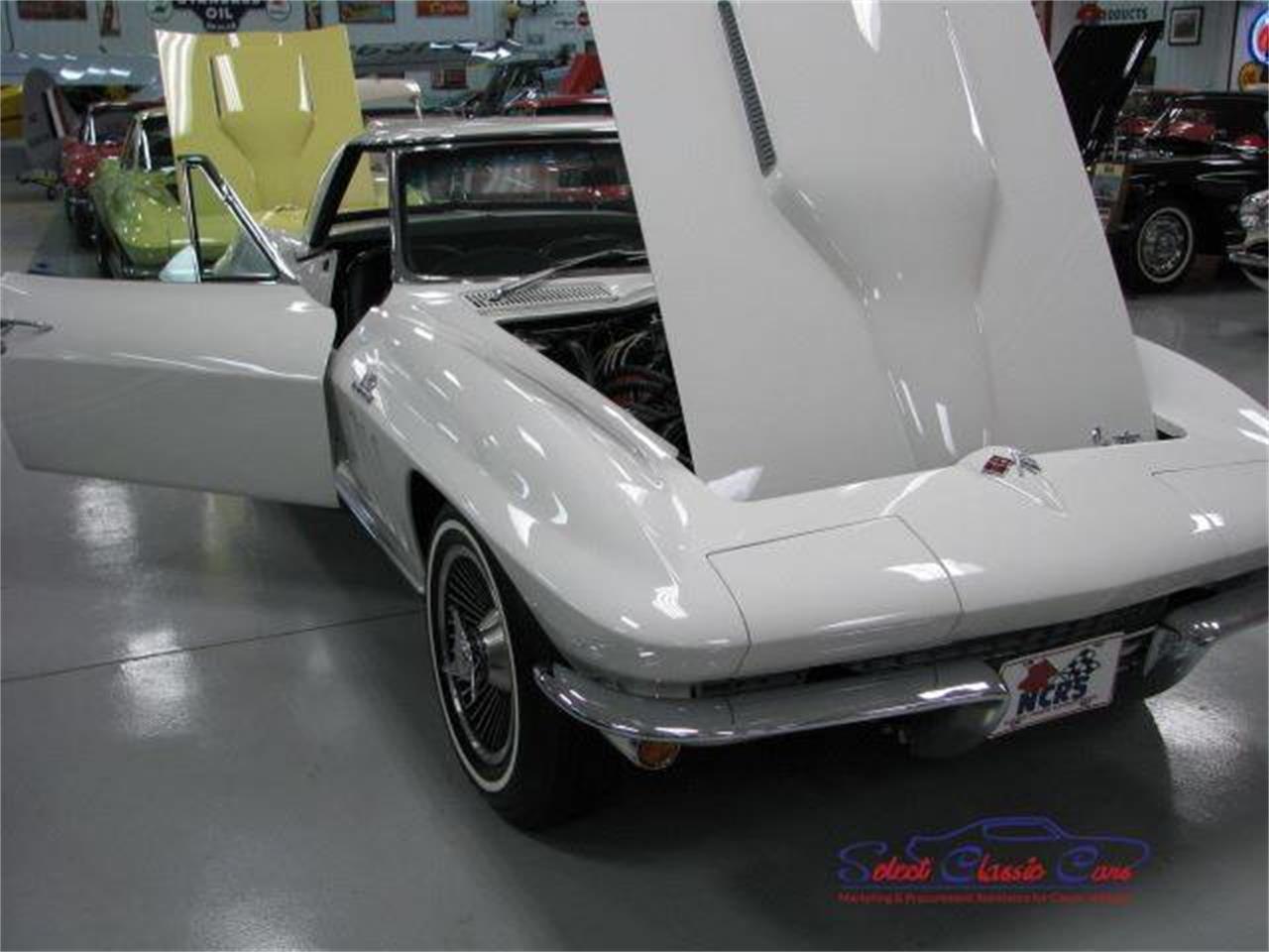 Large Picture of '66 Corvette - QBDG