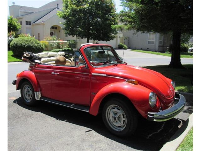 Picture of '79 Beetle - QBIH