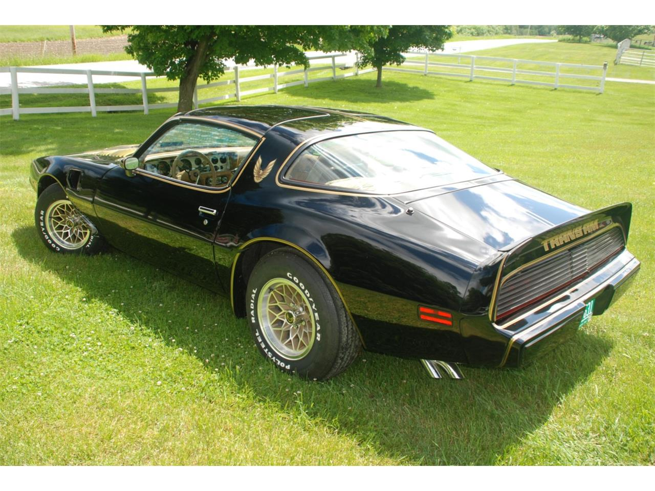 Large Picture of '79 Firebird Trans Am - QBNE