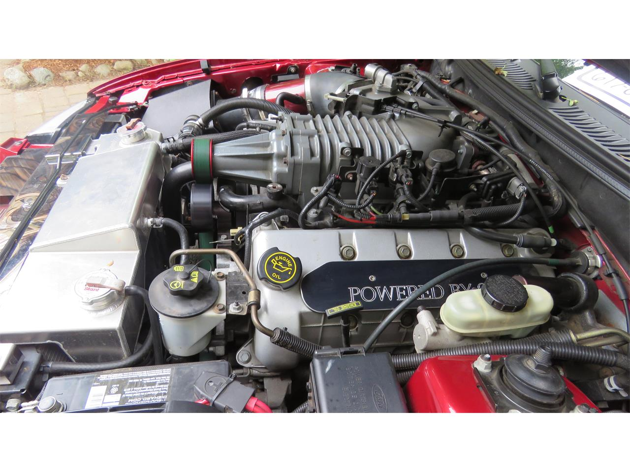 Large Picture of '04 Ford Mustang SVT Cobra - $23,000.00 - QBSO