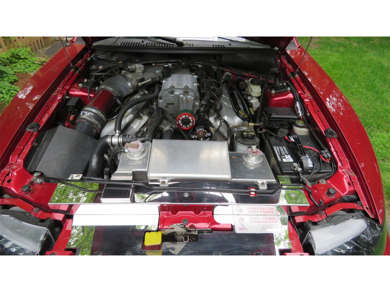 Large Picture of 2004 Mustang SVT Cobra Offered by a Private Seller - QBSO