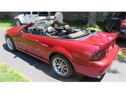 Picture of '04 Ford Mustang SVT Cobra - $23,000.00 Offered by a Private Seller - QBSO