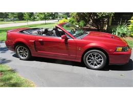 Picture of '04 Mustang SVT Cobra - $23,000.00 Offered by a Private Seller - QBSO