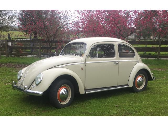 Picture of Classic '54 Beetle located in San Martin California Auction Vehicle Offered by  - QC0P