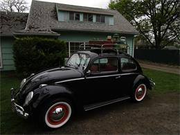 Picture of '59 Beetle - QC16