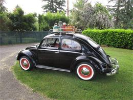 Picture of Classic 1959 Beetle Offered by Bring A Trailer - QC16