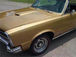 Picture of Classic '65 GTO - QC61