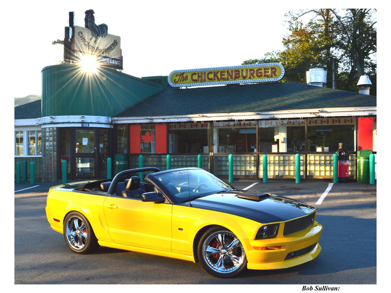 Large Picture of 2007 Ford Mustang GT Offered by a Private Seller - QCB1