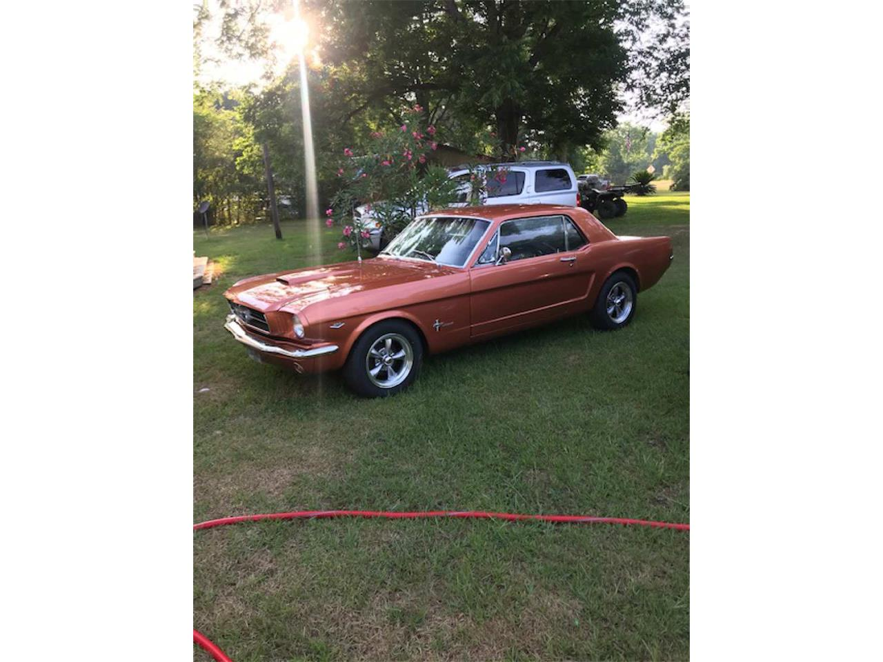 Large Picture of '64 Mustang - QCKB