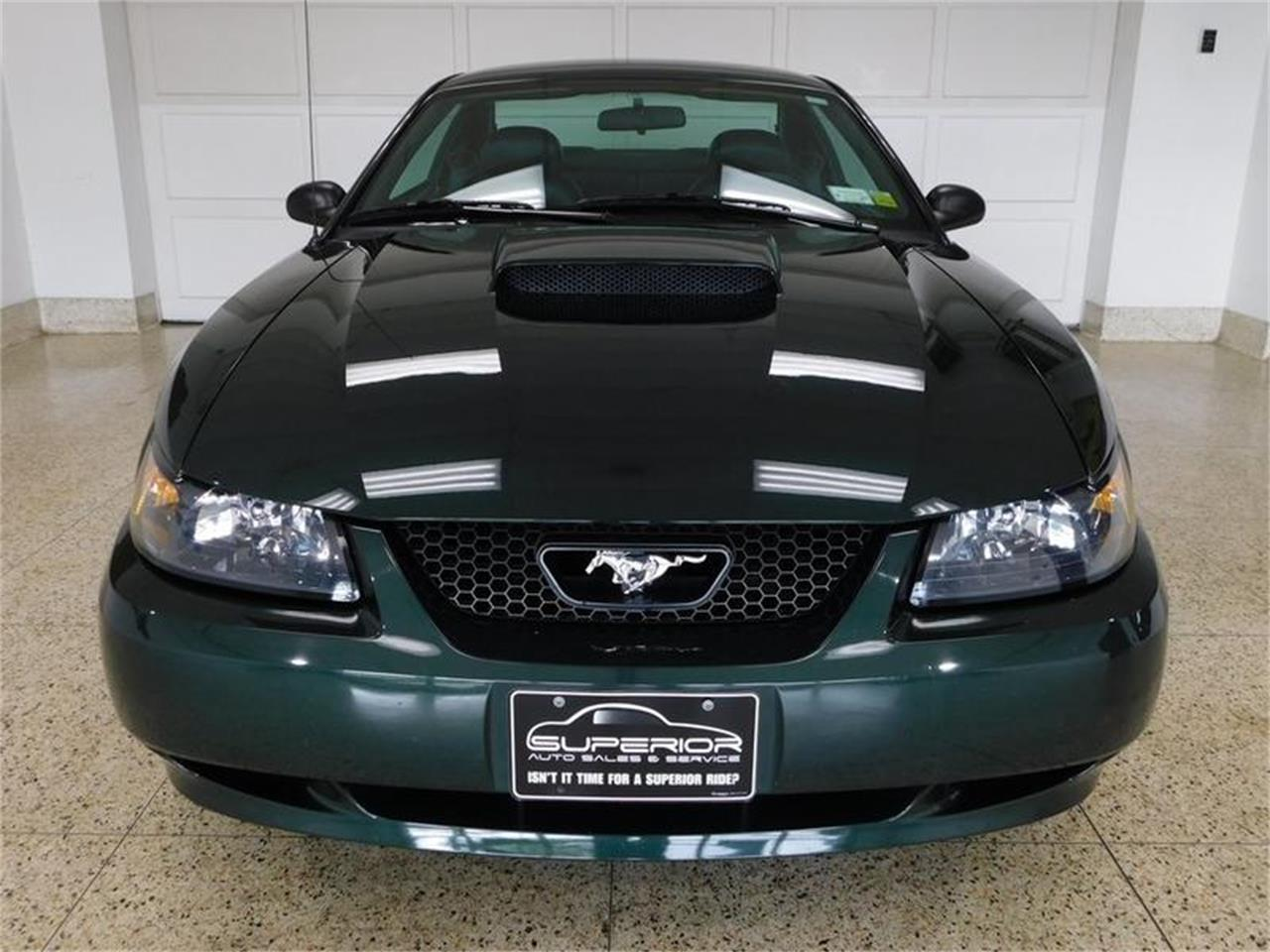 Large Picture of '01 Mustang - QCVF