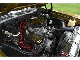 Picture of 1972 Chevrolet Chevelle Malibu SS - QD08