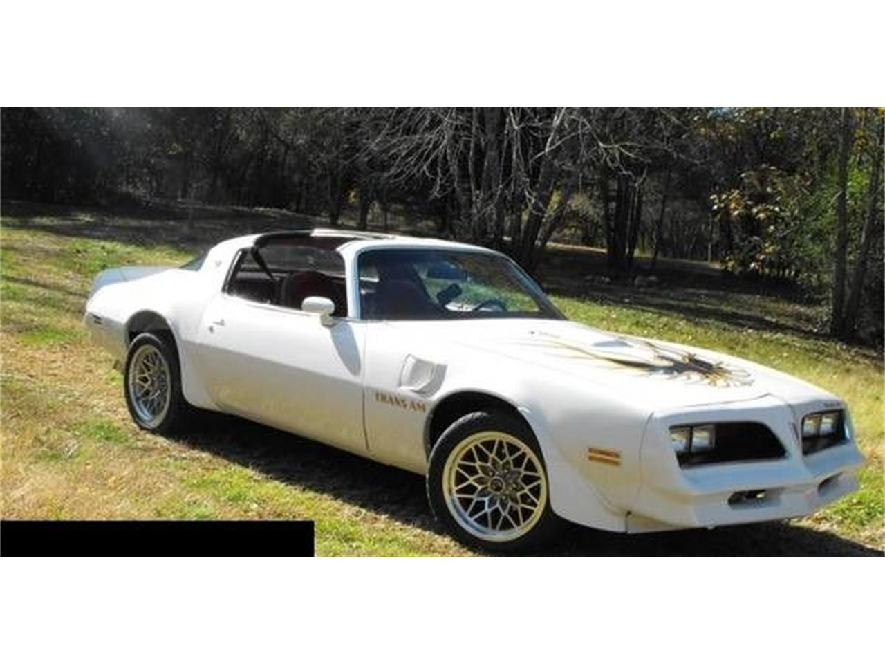 Large Picture of '77 Firebird Trans Am located in Cadillac Michigan Offered by Classic Car Deals - QE1M