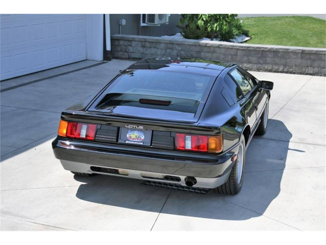 Large Picture of '88 Lotus Esprit located in New York Offered by Great Lakes Classic Cars - QE3Z