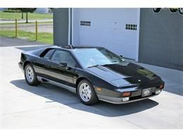 Picture of 1988 Esprit Offered by Great Lakes Classic Cars - QE3Z