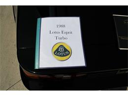 Picture of '88 Lotus Esprit located in Hilton New York - QE3Z
