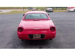 Picture of 2002 Ford Thunderbird located in Georgia Offered by Georgia Mountain Classic Cars - QEBP