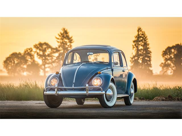 Picture of '65 Beetle - QEHU