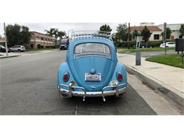 Picture of Classic '63 Beetle Auction Vehicle - QEU8