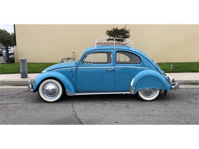 Picture of Classic 1963 Volkswagen Beetle - QEU8