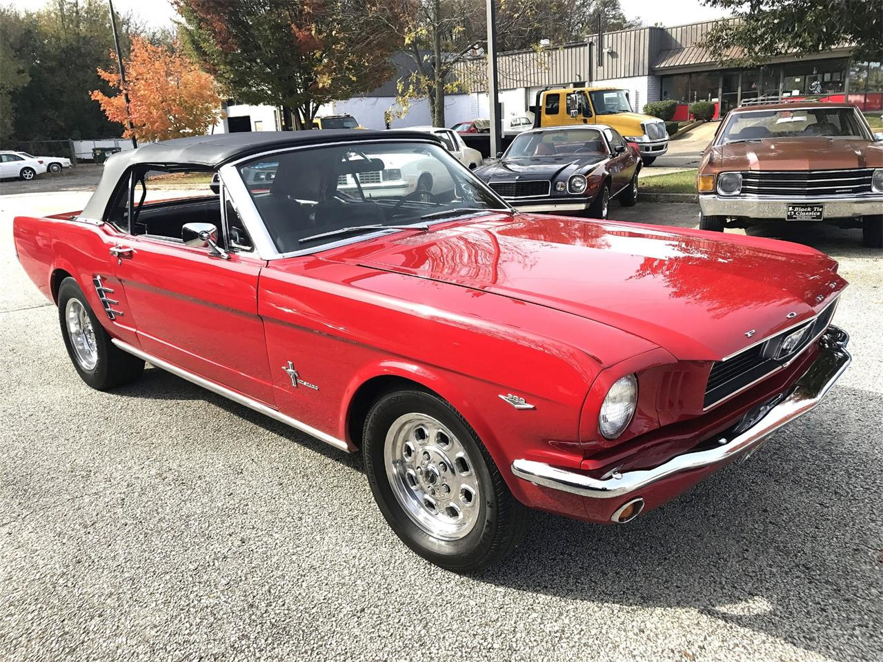 Large Picture of '66 Mustang - QF88