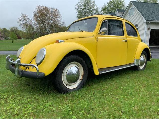 Picture of '64 Beetle - QDAI