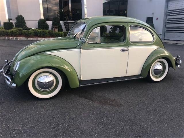 Picture of '54 Beetle - QDAJ