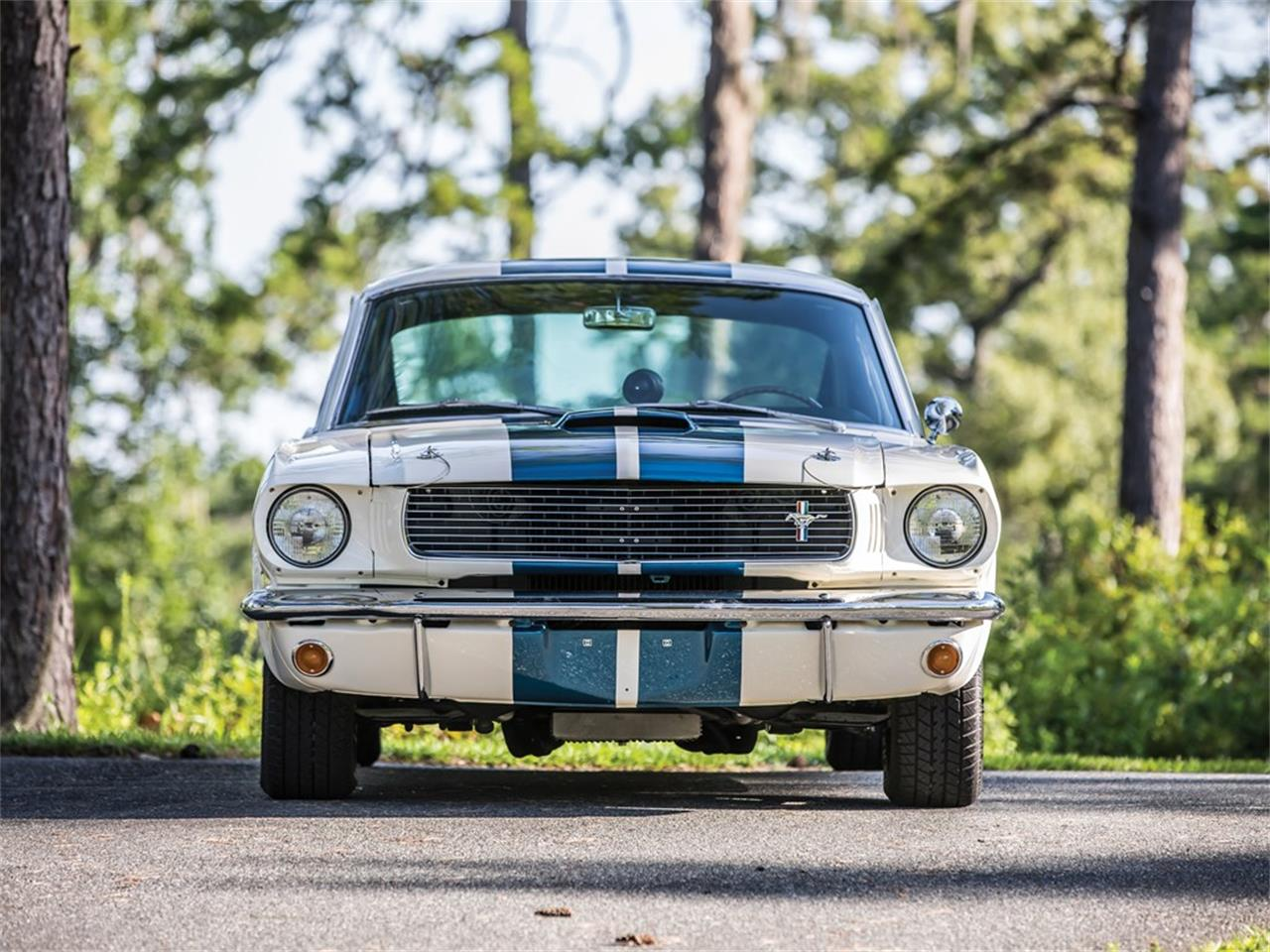 Large Picture of '66 GT350 - QFAY