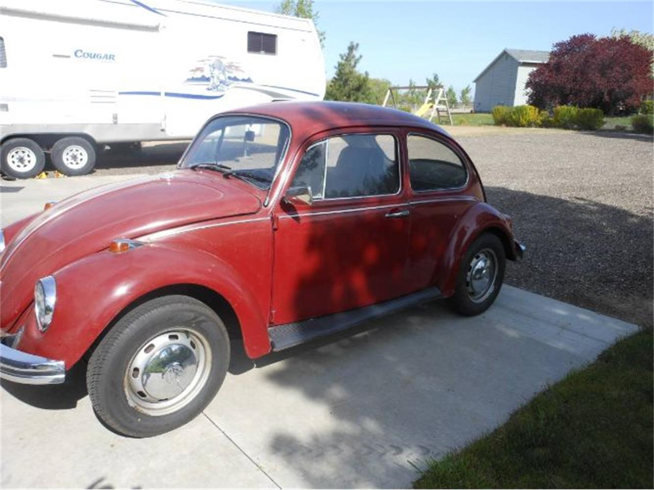 Large Picture of '69 Beetle - QFIE