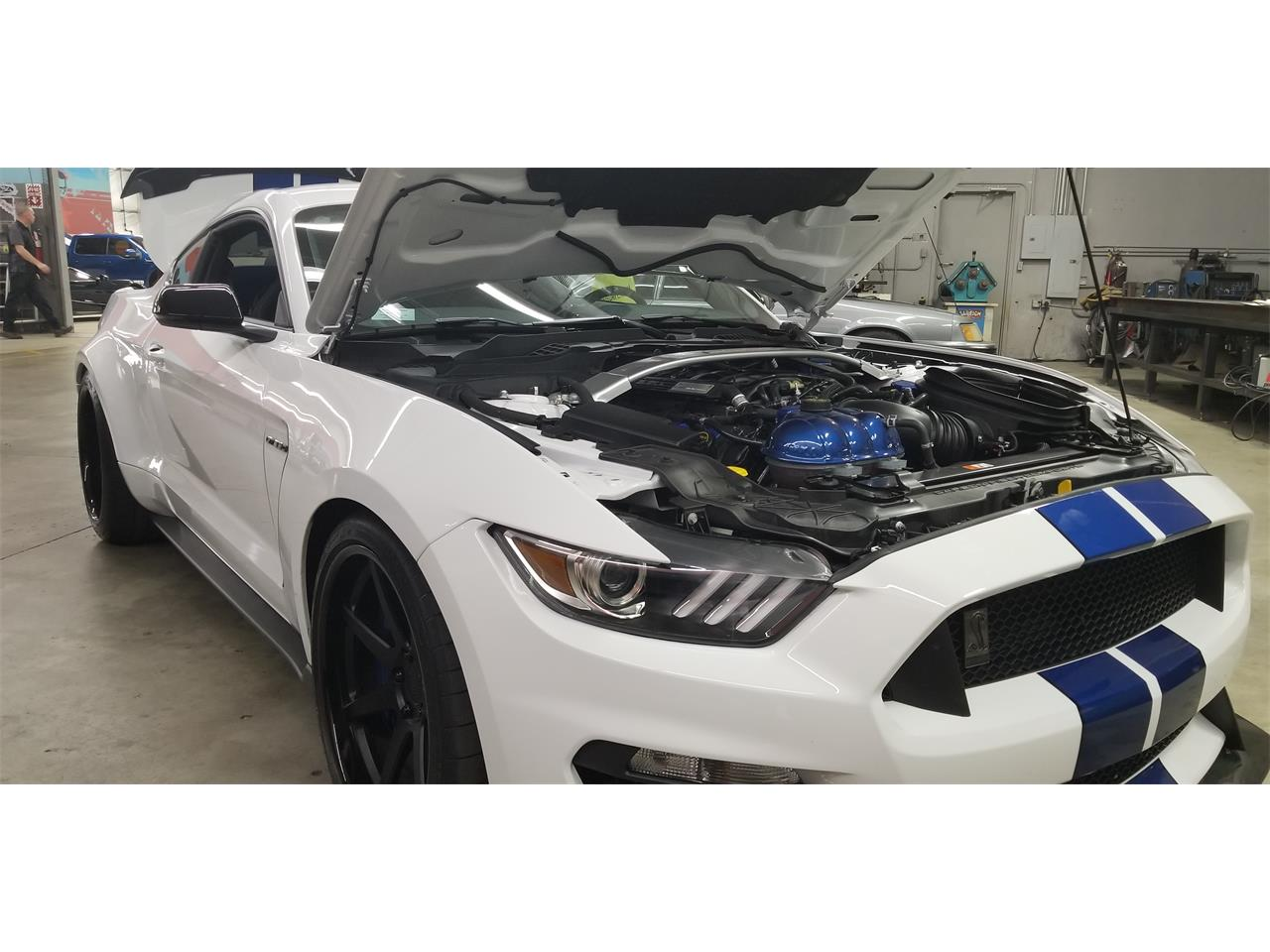 Large Picture of '17 GT350 - QFMA
