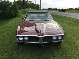 Picture of '67 Firebird - QG2I