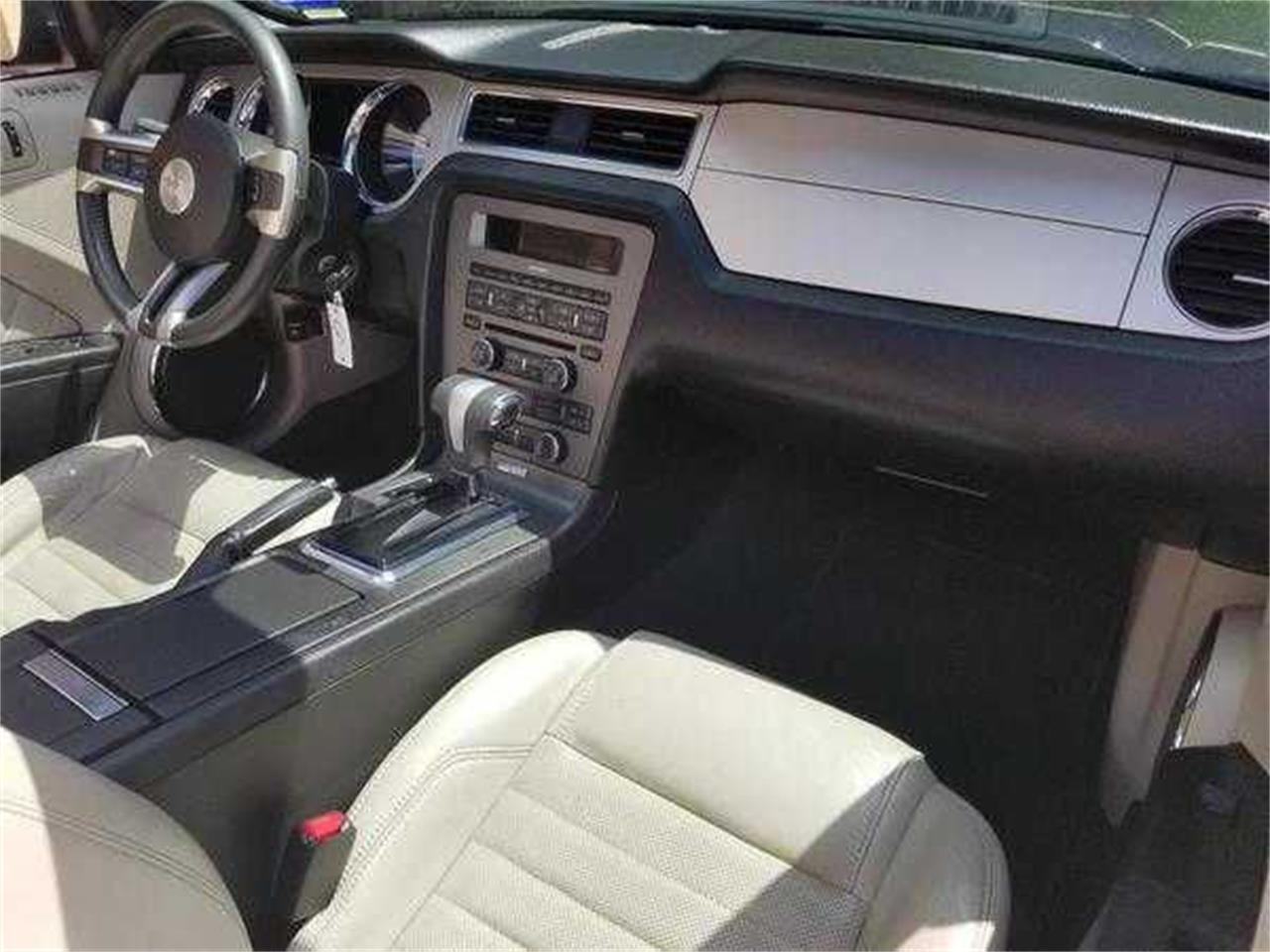 Large Picture of '10 Mustang - QG7K