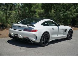Picture of '19 AMG - QGAL
