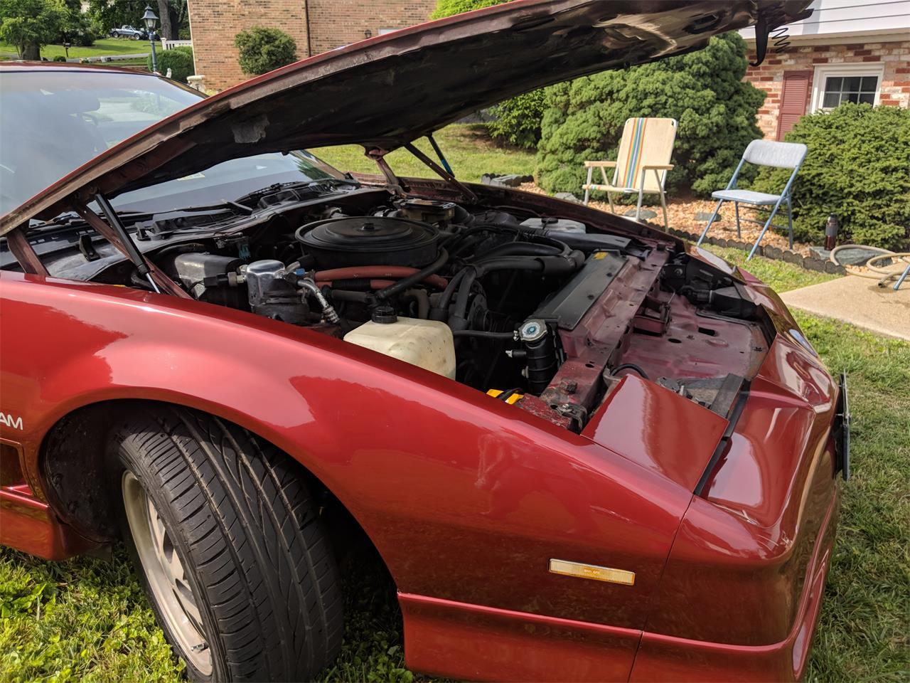 Large Picture of '86 Firebird Trans Am WS6 - QGC1
