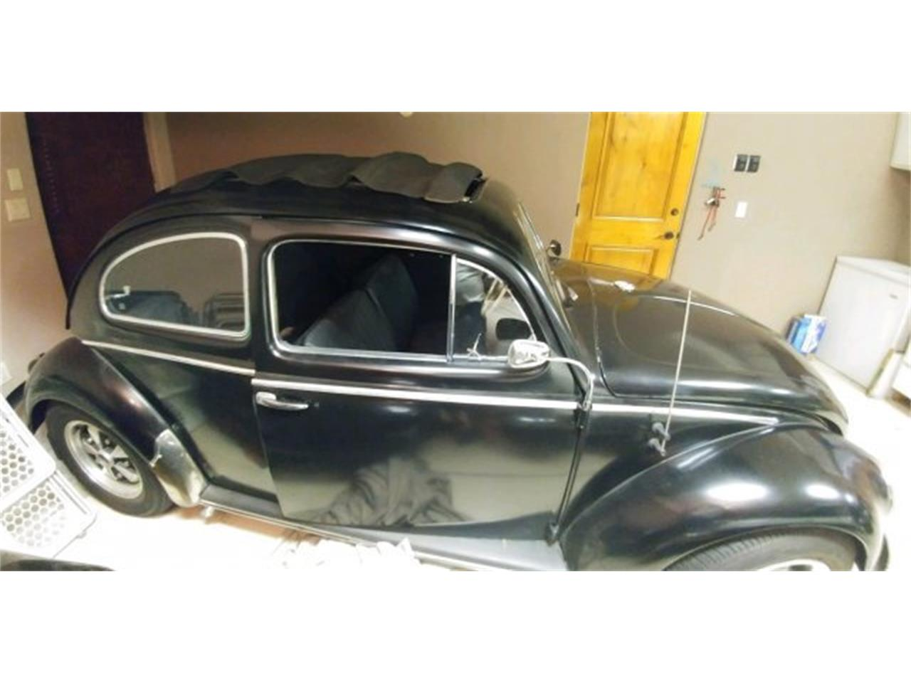 Large Picture of '56 Beetle - QGH6